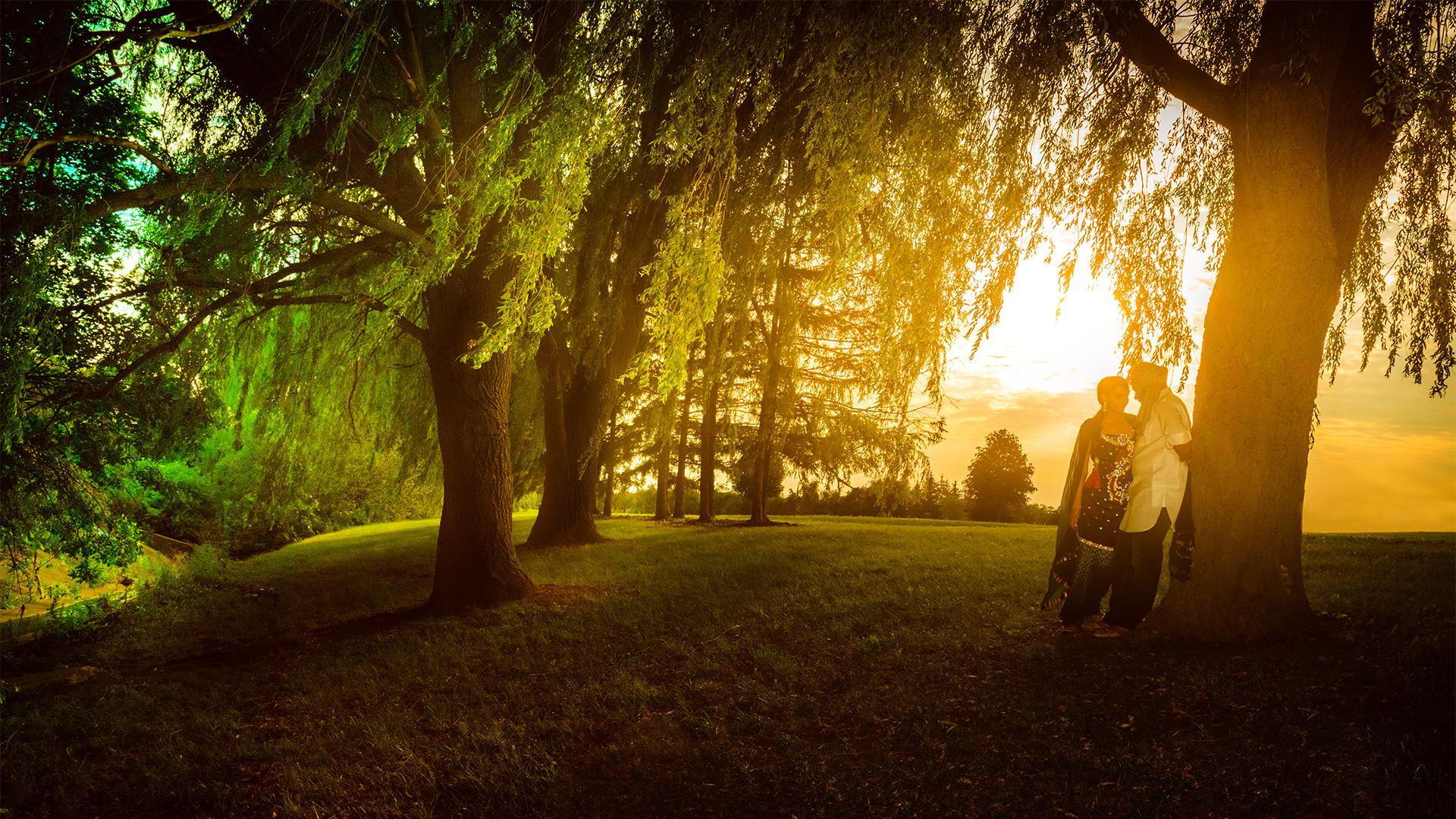 epicskypictures_epicsky_wedding_photography_services_stoney_creek_mississauga_burlington_brampton_eshoot_punjabi_ceremony_sunset_tree_bride_love_story_romantic_pics_photos_images_novel_1920